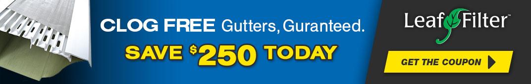 LeafFilter Gutter Guards